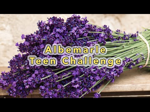 sermon image for Albemarle Teen Challenge