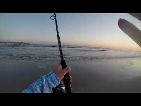 Post Hurricane Florence Surf and Jetty Fishing