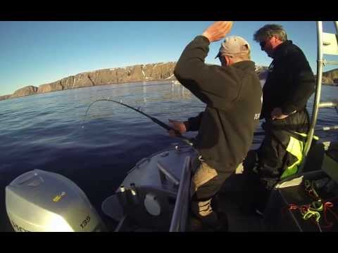 Team Flatfisk kveite 104 kg Halibut fishing