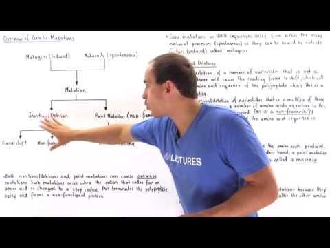 Summary of Gene Mutations