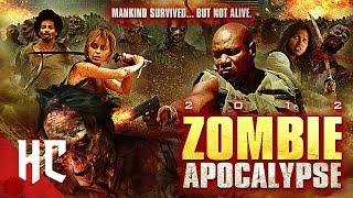 Zombie Apocalypse   Horror Central