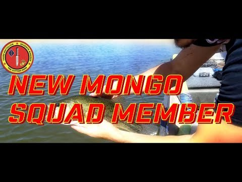 Alamo Lake Bass fishing with new Mongo Squad Member!!! May 12th 2018