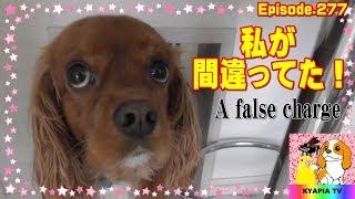 粗相=アンだと思っていたら・・・(;'∀') That is a false accusation! ...