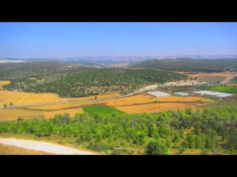 Meor Israel 2014 Movie