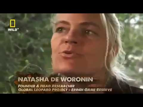 Nat Geo Wild   UNCENSORED 2  Documentary Animal Africa National Park And Nature Reserves