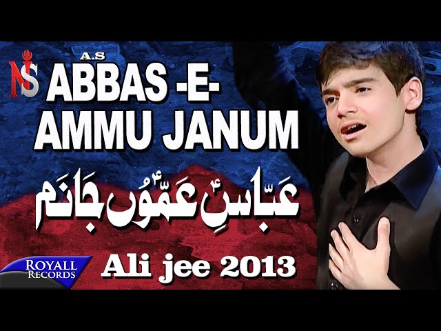 Ali Jee - Abbas Ammu Janum 2014 عباس اعمو جابم Travel Video