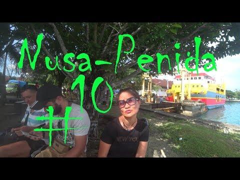 Bali #10 Пристала СОБАКА!!! Паром на БАЛИ с Нуса-Пениды!!!