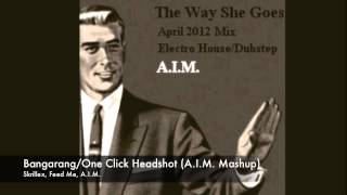 Skrillex/Feed Me - Bangarang/One Click Headshot (A.I.M. Mashup)