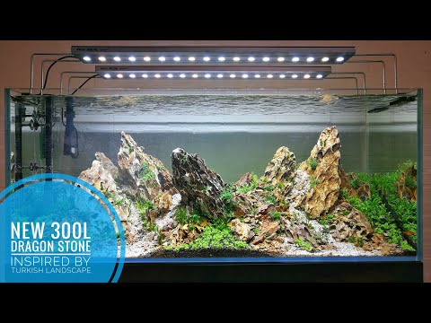NEW 300L - Dragon stone aquascape inspired by the Turkish landscape