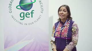 Catalyzing Transformation: GEF at UNFCCC COP24