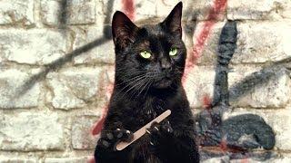 Просто улет, милые котята.  вперёд киски!  Ночь пожирателей рекламы  котики   подборка кошечек