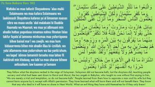 7x Fatiha,  Ayat Kursi,  Ihlas, Falak, Nas   SiHR, MAGiC, JiNN, Evil Eye   Mishary Rashid Text MP3