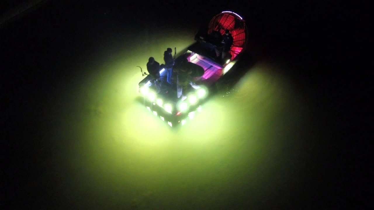 Seelite Bowfishing Youtube
