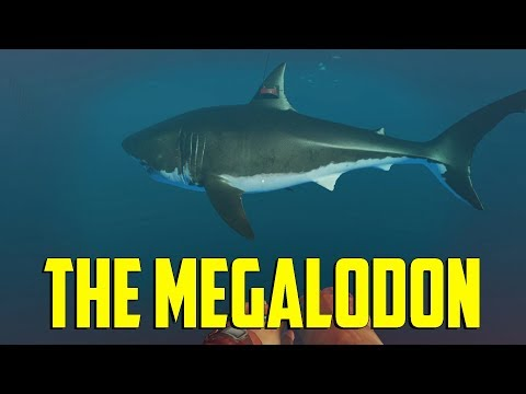Stranded Deep - The Megalodon
