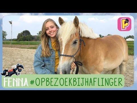 Fenna op bezoek bij een Haflinger   Rassen   Fenna   PennyTV