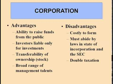 Types of Businesses and Forms of Ownership
