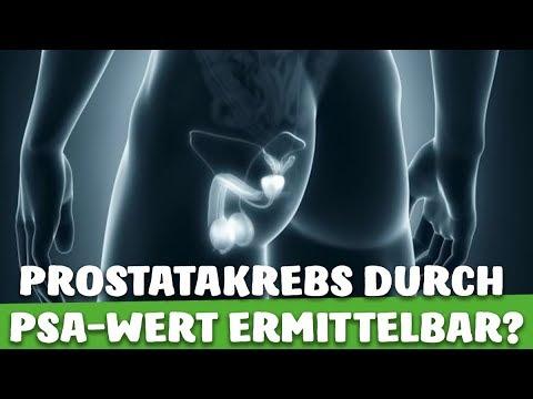 prostata psa wert erhöht