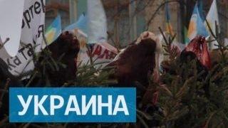 У здания Верховной рады в Киеве на ёлках повесли отрезанные головы коров thumbnail