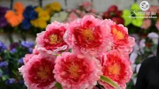 Новинка!  № 124 Букет пионов гигант, 85 см.(Цветы являются украшением нашего быта, нашей жизни. Красивый букет Пион гигант прекрасно подойтет для этог..., 2015-12-25T14:25:54.000Z)