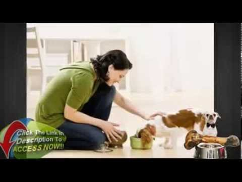 pet-food---homemade-dog-food-recipes