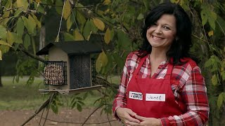How to Winterize Your Yard for Wild Birds