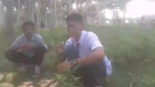 Video Persahabatan Gokil