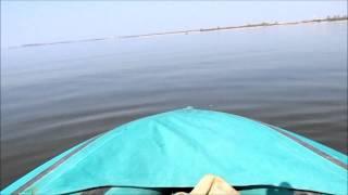 Калининградский залив - судак, окунь..