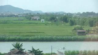 Jiangmen Farmland