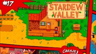 Vídeo Stardew Valley