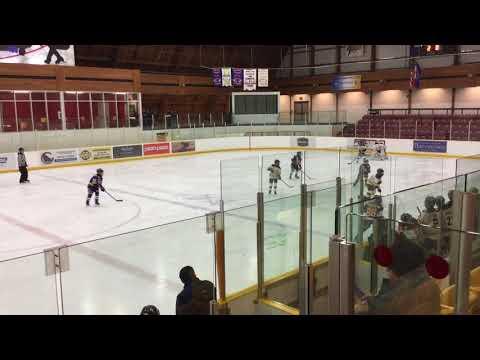 Port Credit Atom A vs Meadowvale Hawks-01/15/2018