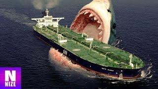 Megalodon - Der Größte Hai Aller Zeiten