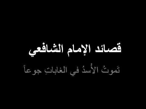 قصائد الإمام الشافعي تَموتُ الأُسدُ في الغاباتِ جوعاً