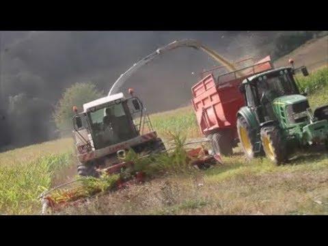Ensilage de maïs 2017 | Claas Jaguar 890 | 2x John Deere 6530