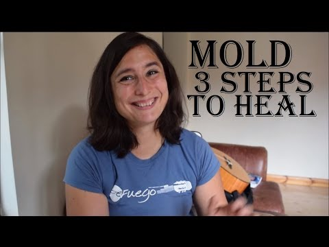 Mold sickness - 3 steps to get better