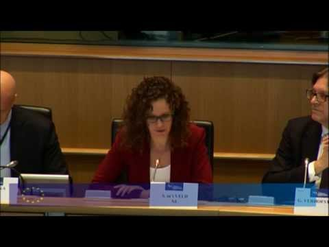 ALDE Group Seminar - A Counter Terrorism Action Plan