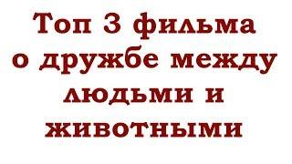 ТОП 3 ФИЛЬМА ПРО ДРУЖБУ ЛЮДЕЙ И ЖИВОТНЫХ (ОСНОВАННЫХ НА РЕАЛЬНЫХ СОБЫТИЯХ)