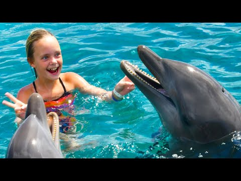 We Play with Dolphins on a Tropical Island! Kids Fun TV