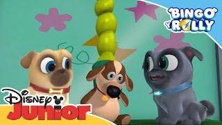 Bingo y Rolly: Momentos mágicos - ¡Vamos a arreglar el muñeco!   Disney Junior Oficial