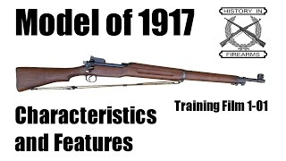 Model 1917 Characteristics and Features (TF 1-01)