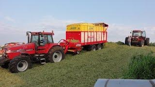 gras inkuilen 2016 met case ih magnum 7240 pro pttinger jumbo 6000 en een magnum 7110 op de kuil