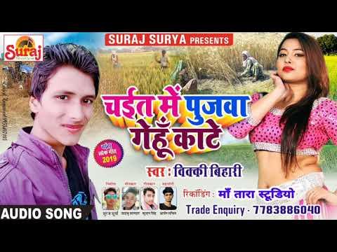 पुजवा गेहूँ काटे।।विक्की बिहारी।।Pujwa Gehu Kate-Vicky Bihari ।।Suraj Surya Bhojpuri