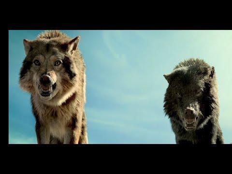 Нападение стаи волков