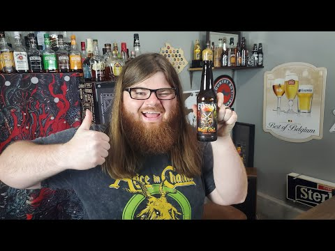 Elysian Night Owl Pumpkin Ale Review! (Pumpkin Beer That Special K Actually Likes!?)