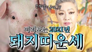 """2021년 띠별운세 돼지띠 운세 대공개 """"95년생 83년생 71년생 59년생"""" 들어온 문서…"""