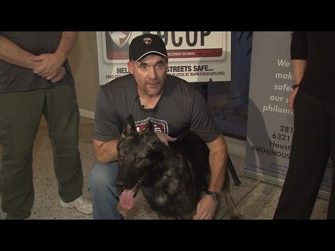 Watch Cop Meet His New K9 Partner After His Dog Died Saving His Life