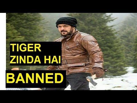 Tiger Zinda Hai banned in Pakistan |Salman Khan| News|