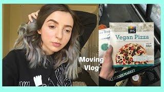 Moving Vlog! Food Shopping (Finally)