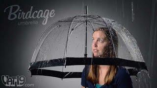 Adorable Birdcage Umbrella