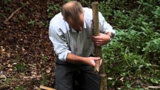 Making A Chair From Hazel Wood