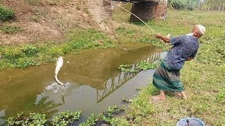 Best Fishing Video | Fishing with Hook | Catching Catfish by Hook (Part-3)
